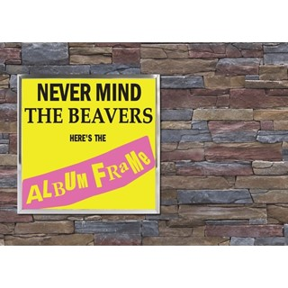 12 inch Record Album Display Frame - zilver