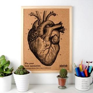 Milimetrado Prikbord Kurk met Houten Frame Anatomi